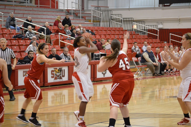SXU Women's Basketball vs Illinois Tech (Ill.) 1/15/14 - Photo 10