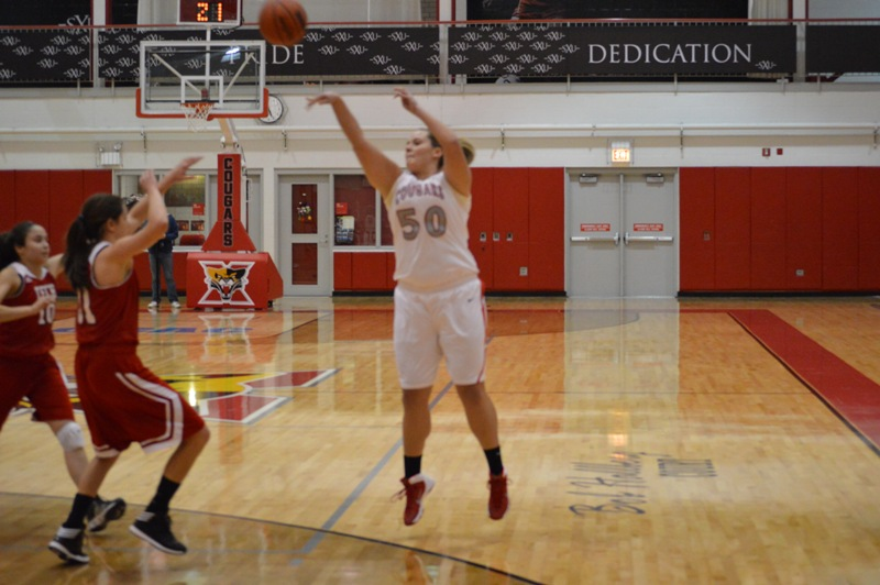 SXU Women's Basketball vs Illinois Tech (Ill.) 1/15/14 - Photo 11