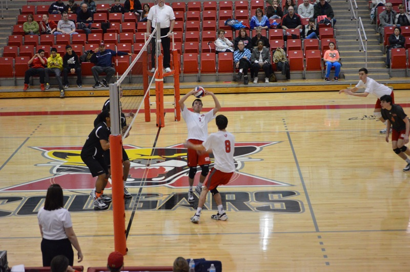 SXU Men's Volleyball vs Lourdes (Ohio) 3/8/14 - Photo 3