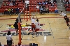 3rd SXU Men's Volleyball vs Lourdes (Ohio) 3/8/14 Photo