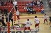SXU Men's Volleyball vs Lourdes (Ohio) 3/8/14 - Photo 6