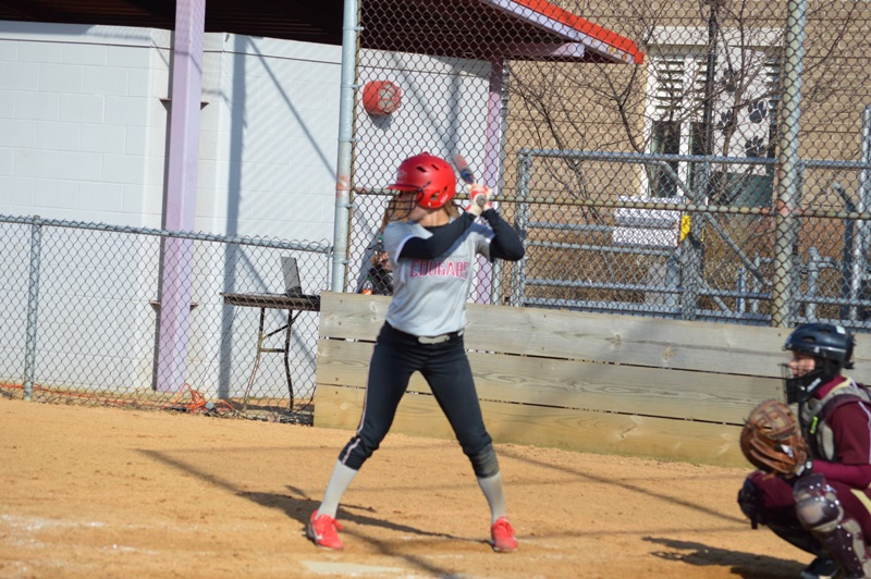 SXU Softball vs Robert Morris (Ill.) 4/1/14 - Photo 14