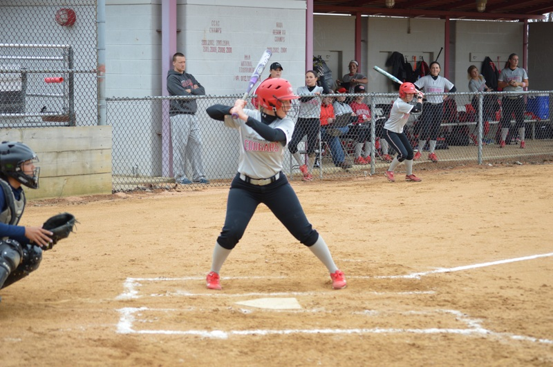 8th SXU Softball vs Trinity Christian (Ill.) 4/10/2014 Photo