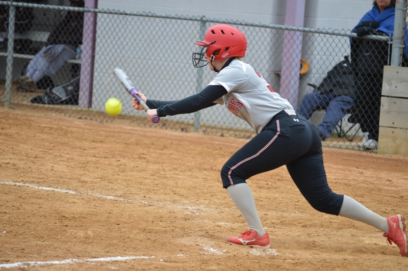 38th SXU Softball vs St. Francis (Ill.) 4/13/14 Photo