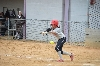 25th SXU Softball vs St. Francis (Ill.) 4/13/14 Photo