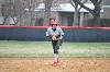29th SXU Softball vs St. Francis (Ill.) 4/13/14 Photo