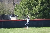31st SXU Softball vs Judson (Ill.) 4/22/14 Photo