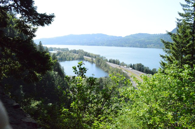 A view of the Columbia River near Falls