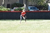 11th SXU Softball vs Roosevelt (Ill.) 9/13/13 Photo