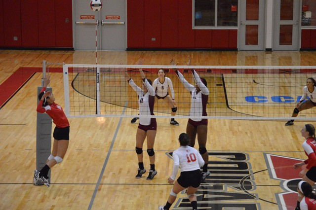 21st SXU Women's Volleyball vs Cardinal Stritch (Wis.) 9/17/13 Photo