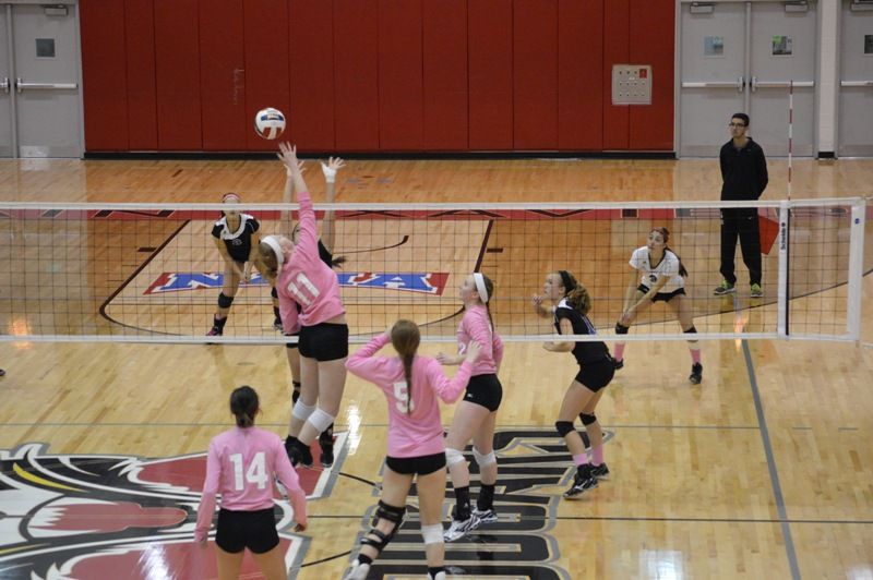 9th SXU Women's Volleyball vs Trinity International (Ill.) 10/29/13 Photo