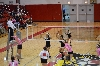 12th SXU Women's Volleyball vs Trinity International (Ill.) 10/29/13 Photo