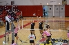 13th SXU Women's Volleyball vs Trinity International (Ill.) 10/29/13 Photo