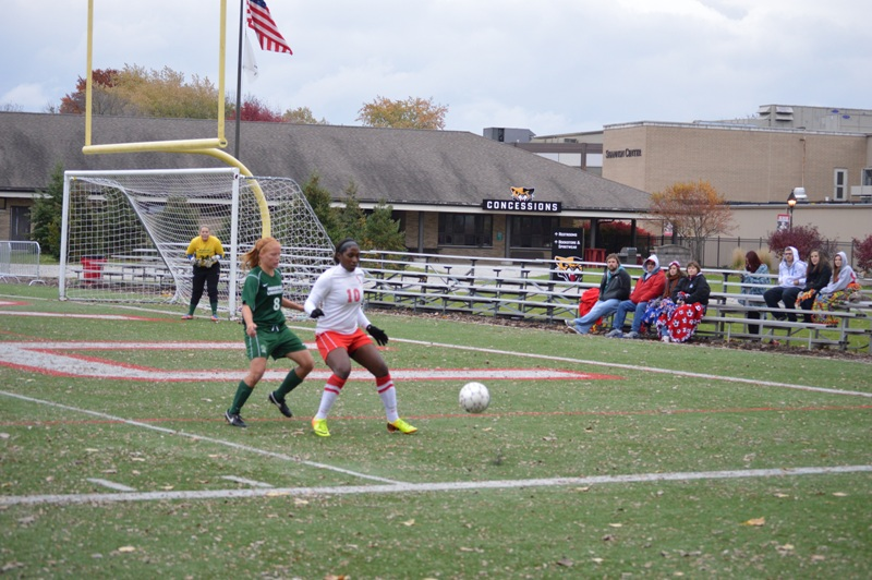 10th SXU Women's Soccer vs Roosevelt (Ill.) 11/2/13 Photo