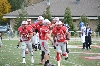 29th SXU Football vs Trinity International (Ill.) 11/9/13 Photo