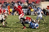 44th SXU Football vs Trinity International (Ill.) 11/9/13 Photo