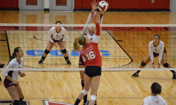 Sophomore Heidi Gregerson finished Tuesday's match with 12 kills in the loss to Cardinal Stritch